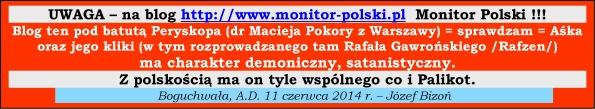 RAFZEN Monitor Polski Rafal Gawronski 595